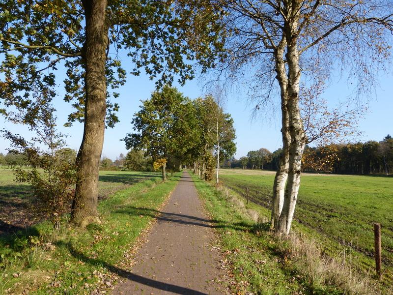 Ostfriesland Wanderweg in Aurich Ostfriesland 97 km - Wandern Radwandern Fahrrad fahren Nordsee Norddeutschland - North Sea North Germany bicycle hiking hike walk walking Landleben landlife
